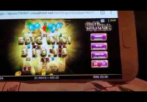 2.7k win white rabbit slots 50p stake bonus all reels unlocked!! #casinocalzone