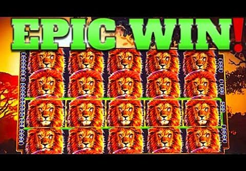 $ FULL SCREEN DOUBLE MEGA WIN!!! $ KING OF AFRICA WMS SLOT MACHINE!