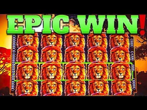 $ FULL SCREEN DOUBLE MEGA WIN!!! $ KING OF AFRICA WMS SLOT MACHINE!