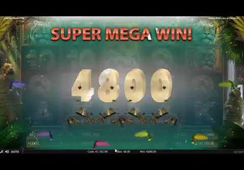 Super mega win 62000$ in Jungle Spirit slot. Mega Big Win X7700