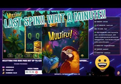 NEW Multifly from Yggdrasil!! Mega Win in bonus game