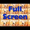 🏴☠️ PIRATE SHIP Slot Machine – Full Screen of Skulls – MEGA BIG WIN – WMS Pokies