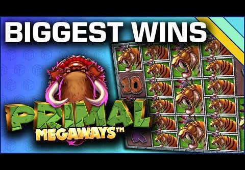 Top 10 Slot Wins on Primal Megaways
