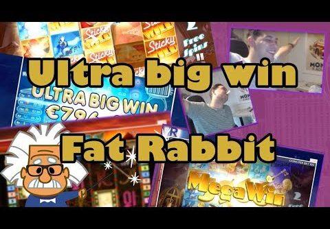 Ultra Big Mega Win on Slot Fat Rabbit from Push Gaming