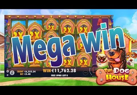 The Dog House – Mega win in Free spins