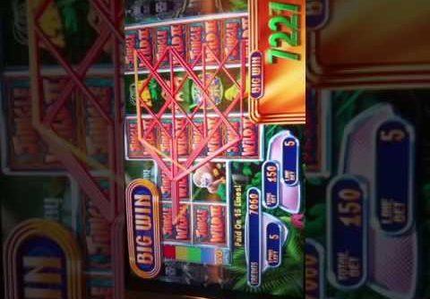 Jungle wild 2 slot machine 20 spin big win bonus