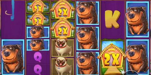 dog house megaways mega win