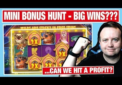 THIS SHOULD BE GOOD !!! Big Win on The DOG HOUSE SLOT !!!