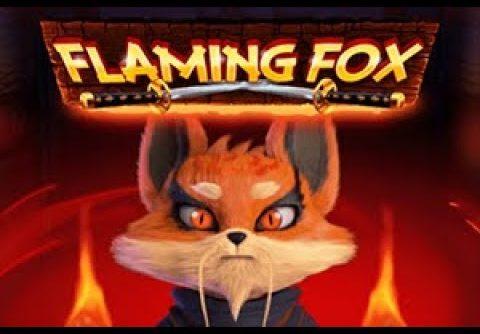 Flaming Fox (red tiger) – Mega win! ($1 bet)