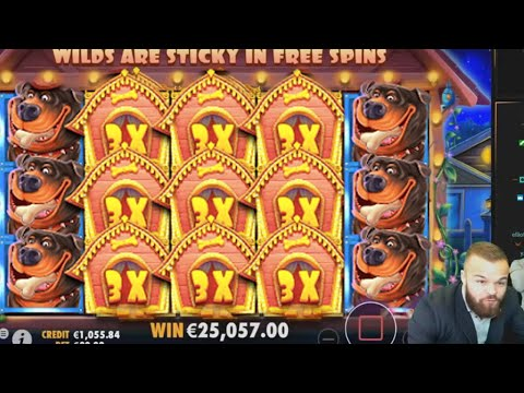The Dog House MEGA WIN – Biggest Casino Slot Win by ClassyBeef