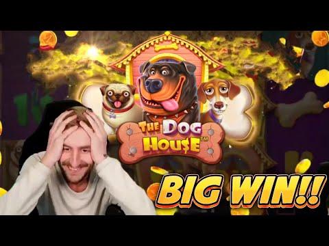BIG WIN! DOG HOUSE BIG WIN – CASINO Slot from CasinoDaddys LIVE STREAM (OLD WIN)