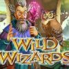 Big win on Wild Wizards (RTG slot)