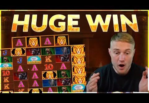HUGE WIN!! Safari Gold BIG WIN  – Online slot from Casinodaddy LIVE Stream