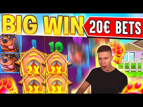 17 SPINS FOR A GOOD SETUP – DOG HOUSE BONUS 🎰 BIG WIN ON PRAGMATIC PLAY ONLINE SLOT MACHINE
