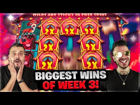 BIGGEST WINS OF WEEK 3!   Record win on DOG HOUSE online slots