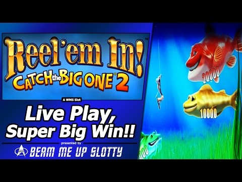 Reel Em In, Catch the Big One 2 Slot – LivePlay, Super Big Win! in Free Spins Fishing Bonus