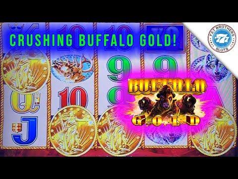 CRUSHING Buffalo Gold Slot Machine! Wild Battle for the SUPER BIG WIN!
