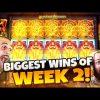 BIGGEST WINS OF WEEK 2! | Insanity Wins on Online Slots