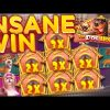 INSANE BIG RECORD WIN Dog House Pragmatic Casino Slot
