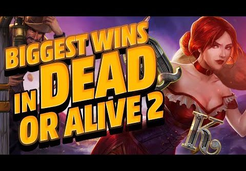 Biggest Wins in Dead or Alive 2 Slot