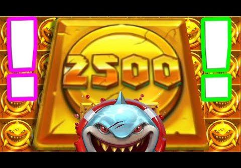 RAZOR SHARK 🦈🦈🦈SLOT MY BIGGEST RECORD WIN 🏆 2500X COIN DROPS INSANE BONUS HUNT UP TO €50 BET ‼️