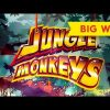 Jungle Monkeys Slot – BIG WIN BONUS!