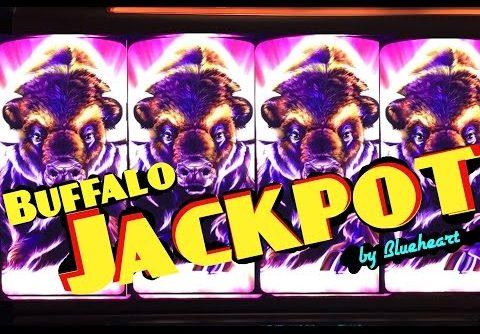 BUFFALO STAMPEDE slot machine JACKPOT HANDPAY and HUGE MEGA BIG WIN! (2 videos)