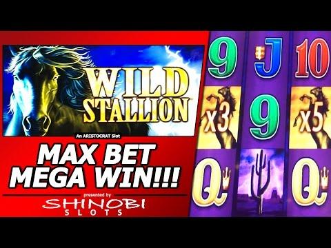 Wild Stallion Slot Bonus – Max Bet, Mega Big Win!!!  Another Big Free Spins Win on the Same Machine!