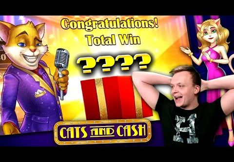 Why to play the 1-Line Strategy on Cats and Cash Slot (SUPER BIG WIN!!)