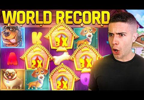[WORLD RECORD] MASSIVE WIN ON DOG HOUSE 🐶 AyeZee Stream Highlights ft. @Yassuo