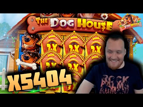 INSANE WIN! Streamer win x5500 on The Dog House Slot! BIGGEST WINS OF THE WEEK! #16