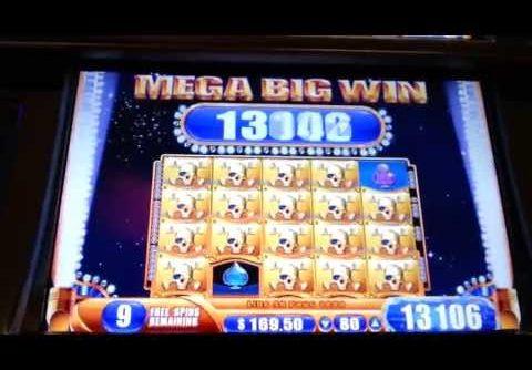Pirate Ship Mega Big Win Bonus WMS Slot Machine