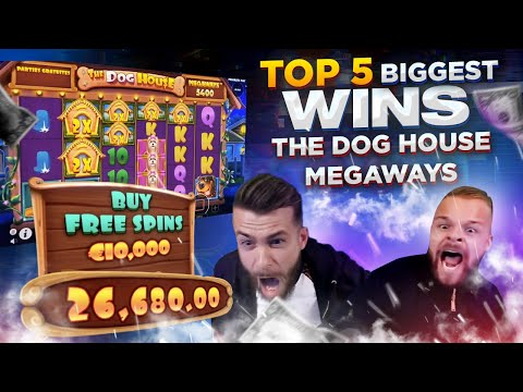 WORLD RECORD WIN €234 680 on Dog House Megaways – TOP 5 Biggest Wins
