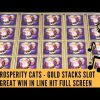 PROSPERITY CATS – GOLD STACKS SLOT – FULL SCREEN – GREAT WIN IN LINE HIT – SunFlower Slots