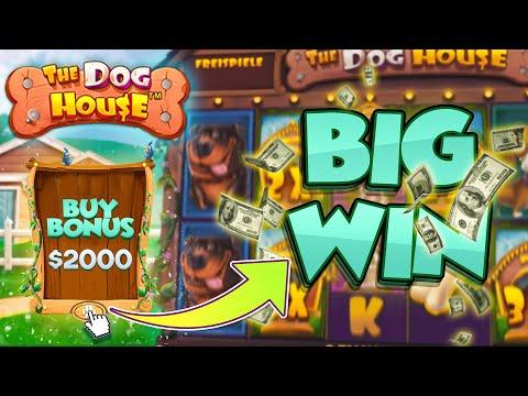 BIG WIN ON THE DOG HOUSE MEGAWAYS SLOT   Joe Stream Highlights #63
