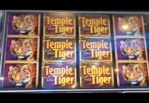** $500 Free Play ** BIG WINS ** Temple of the Tiger ** SLOT LOVER **