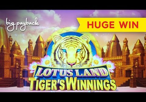HUGE WIN RETRIGGER! Lotus Land Tiger's Winnings Slot – SO UNEXPECTED, SO AWESOME!
