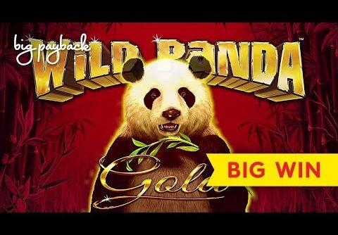 BIG WIN, MAX BET! Wild Panda Gold Slot – GREAT SESSION!