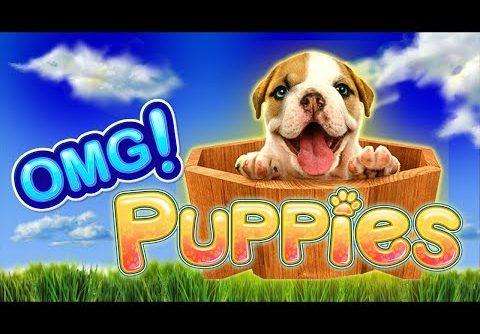 OMG! Puppies Slot – BIG WIN SESSION!