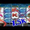 Dolphin reef slot 💰1.5K Mega bigwin ll Mega888 ll free game ll SGP