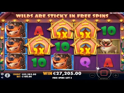 The Dog House  BIG WINS – Record win on slot  100.000£