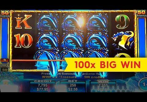 50 Dolphins Slot – BIG WIN BONUS!