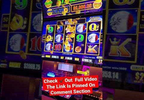 Winning Mega Bucks On Dragon Cash Slot #SHORTS