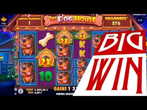 The DOG HOUSE megaways slot Biggest win | Best wins of the week online casino